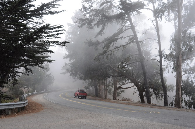 Fog in Monterey