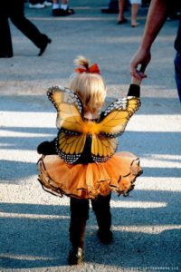 halloween-in-pacigfic-grove-butterfly-costume image by duet letterpress