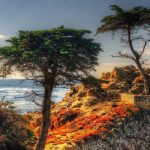 history of pebble beach