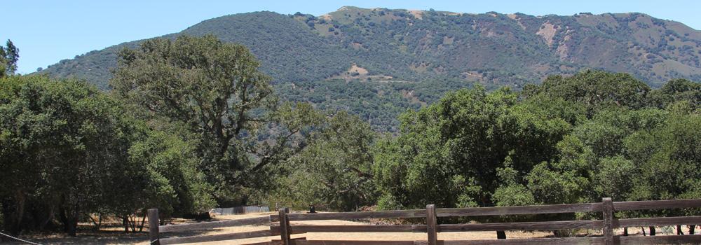 Rancho Road, Carmel Valley, CA 93924