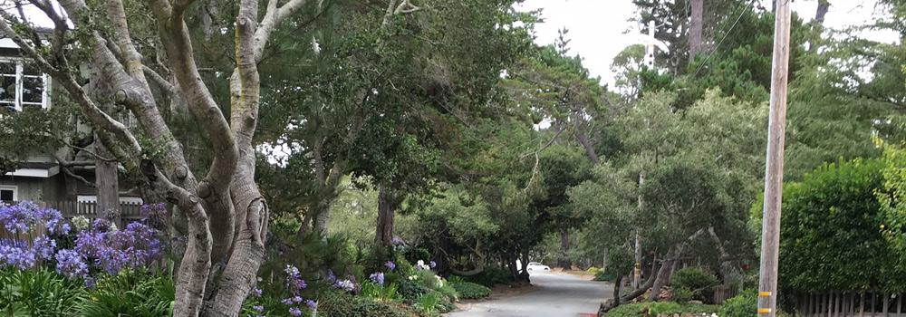 Vizcaino 10 SE of Mountain View, Carmel, CA 93923