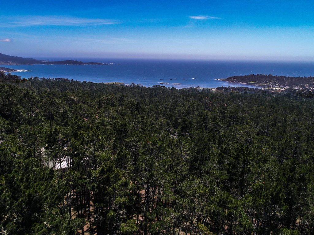 Preparing to List Your Monterey Peninsula Home