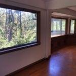 Window spruce