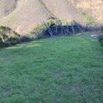 Grassy Lawn