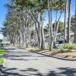 Cypress Grove 1 (43)