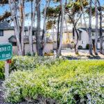 Cypress Grove 1 (44)