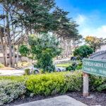 Cypress Grove 1 (45)
